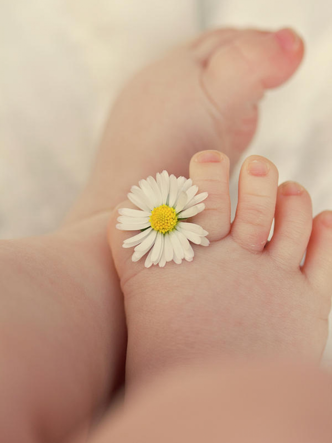 flower-in-baby-toes-augenwerke-fotografie–nadine-grimm